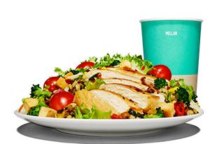 Chicken Sallad Meal Meal
